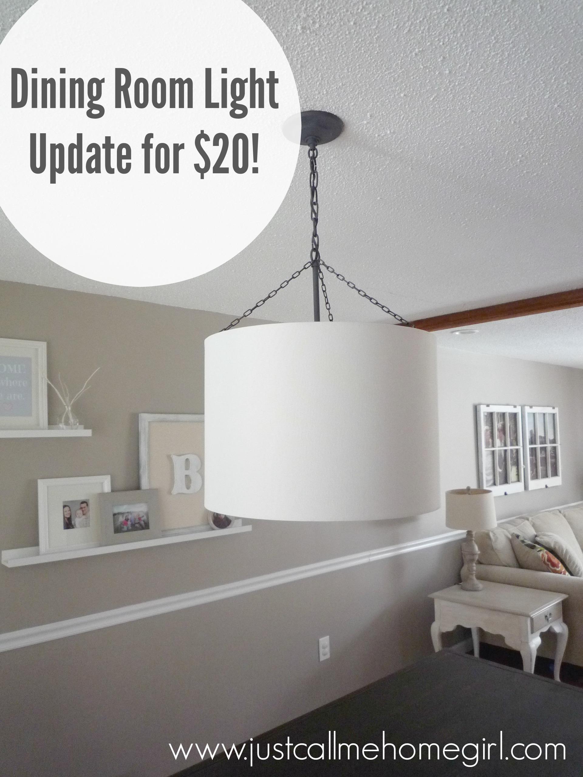 Dining Room Light Fixture Update