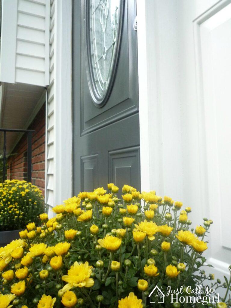 frontdoorflowers
