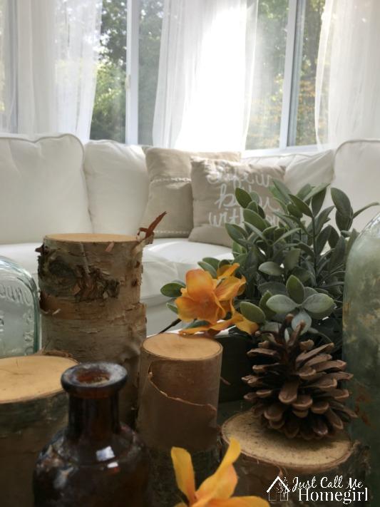fall-birch-decor