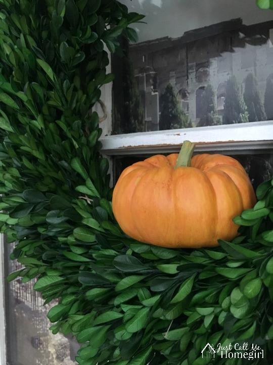 Boxwood Wreath Pumpkin