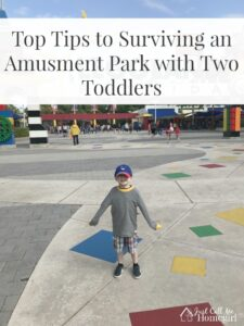 Tips For Surviving An Amusement Park with Toddlers